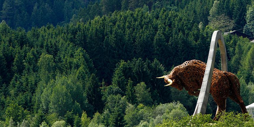 bull_austria