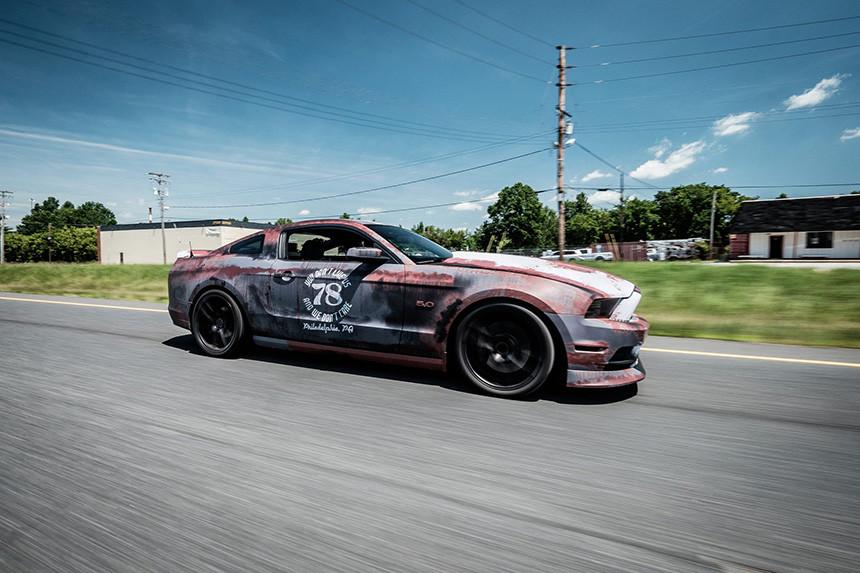 Rat Mustang w niecodziennym stylu