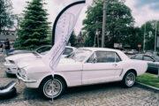 II Śląski Spot Mustangów - Rumaki na wybiegu